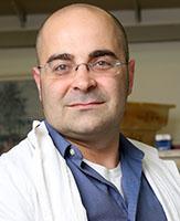 Dr. Yonatan Tzur