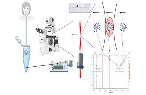 פיתוח שיטה חדשה לאיתור מהיר של נגיף הקורונה בדגימות רפואיות