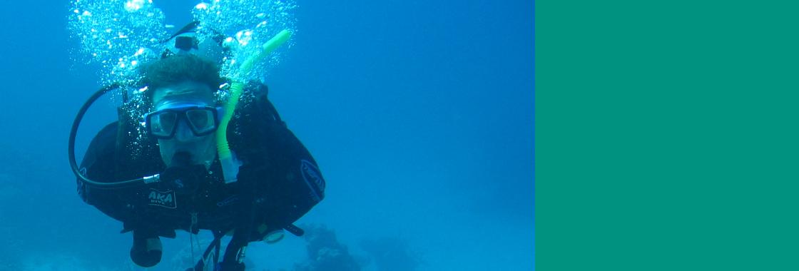 הכרת המערכת הימית של מפרץ אילת